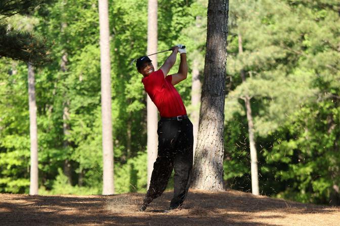 Tiger tra i pini alla 13